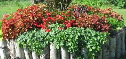 Уникальное оформление сада