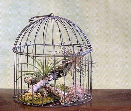 Украсить интерьер используя клетку для птиц