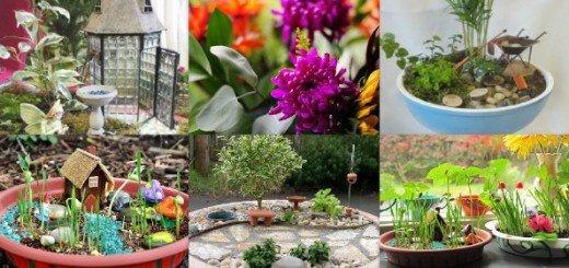 Как создать миниатюрные сады