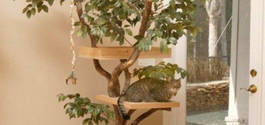 Удивительный дом для кошек