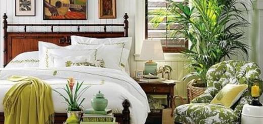 Как преобразить спальню, комнатные растения