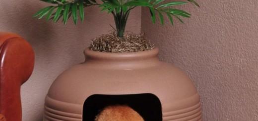 Оригинальные идеи как спрятать кошачий туалет для любителей растений и котов