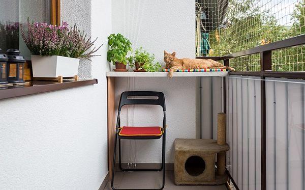 балкон коту