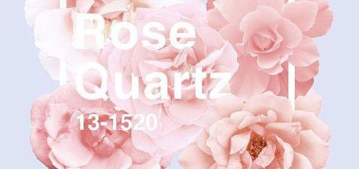 Дизайн с цветом года Pantone розовый кварц