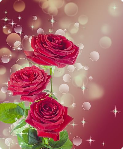 8 Марта праздник Женщин для вас нежные цветы