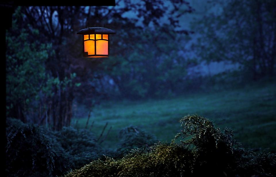 ночь, фонарь в саду