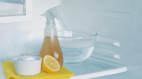 убрать запах в холодильнике