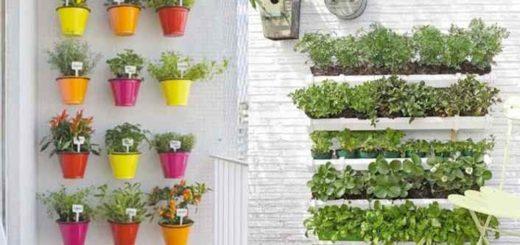 варианты размещения растений на балконе