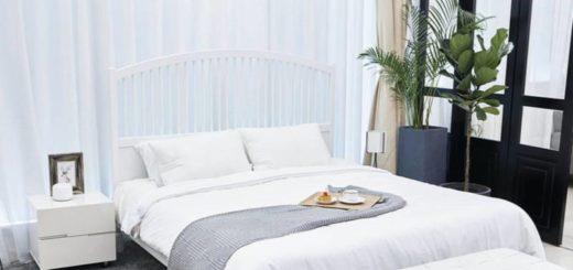 Растения в дизайне спальни
