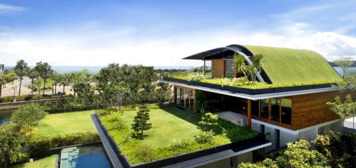 Идеи и предложения по обустройству дома зеленого стиля