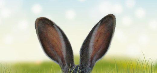 Пасхальный заяц