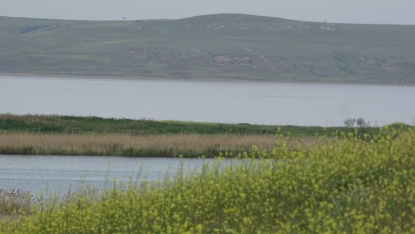 Озеро Чокрак