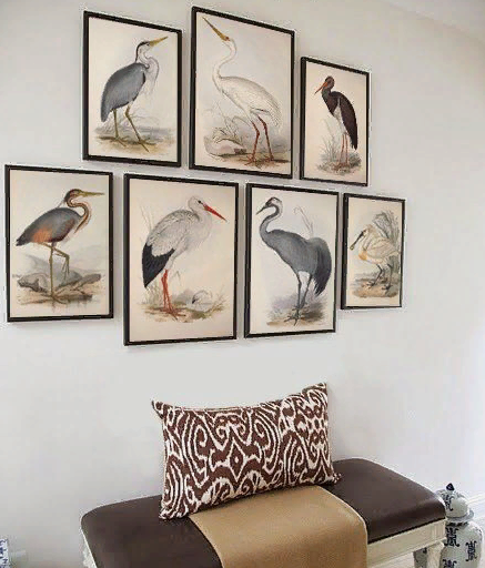 картины с птицами