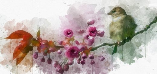 птица на ветке саккууры
