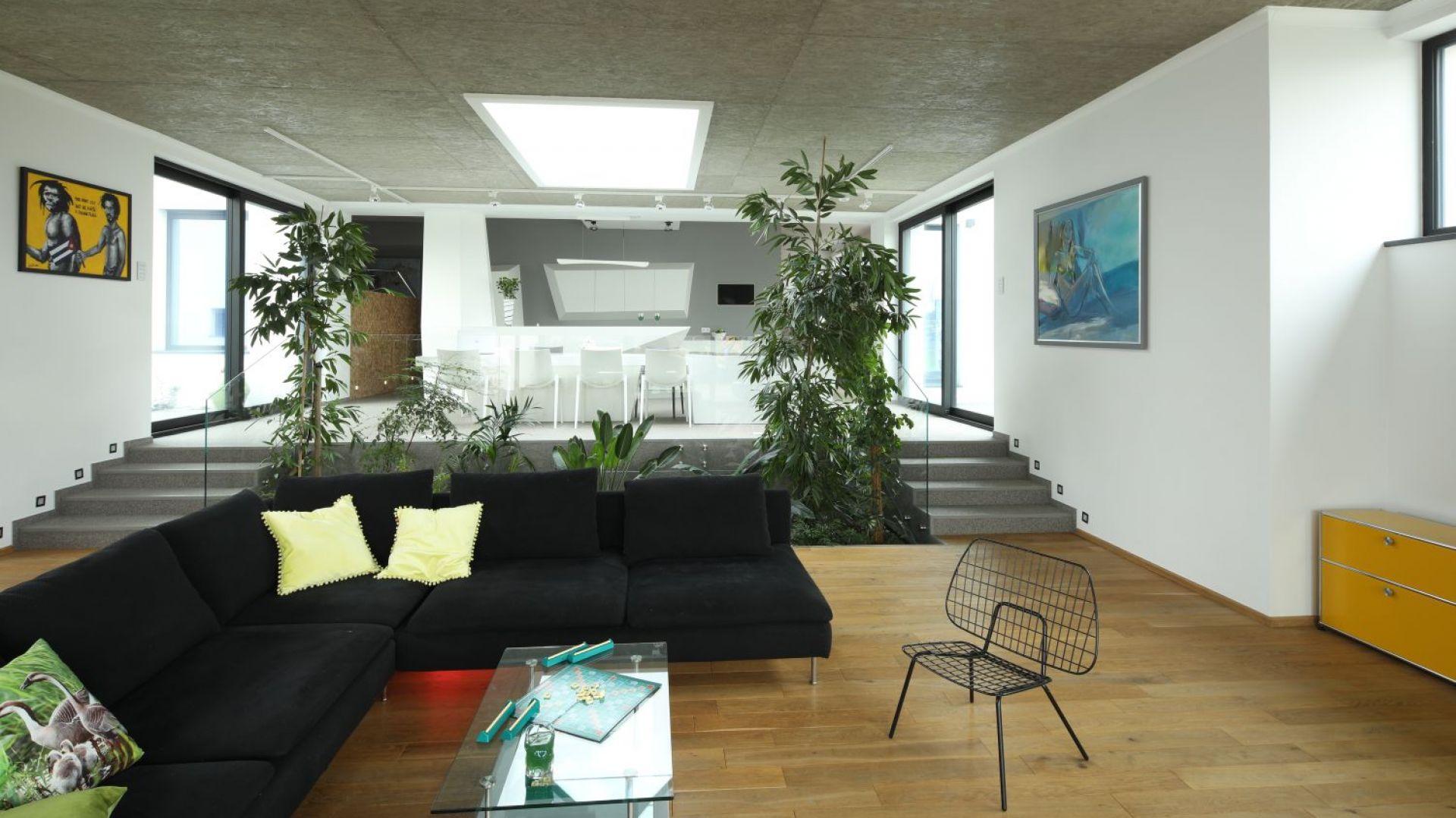 Дом, вдохновленный природой