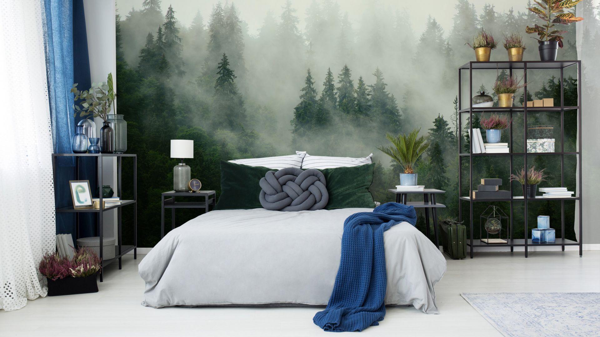 Фото-обои лес в тумане